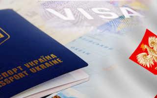 Польская трудовая виза для украинцев — какие документы нужны и как оформить самостоятельно