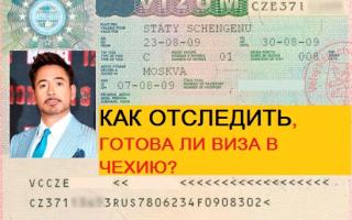 Как отследить готовность визы в Чехию