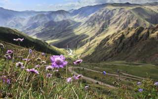 Необходимость визы при поездке в Киргизию
