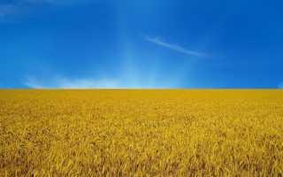 Визовый режим на Украине: правила въезда в страну