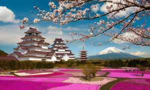 Подготовка документов для визы в Японию