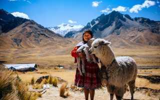 Виза в Чили в 2020 году — правила посещения республики
