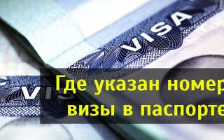 Где указан номер американской визы