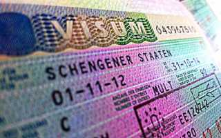 Сколько по времени делается шенгенская виза