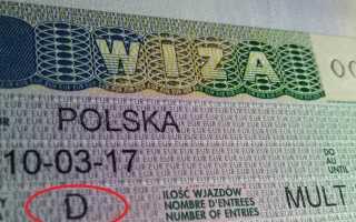 Национальная (D) виза в Польшу — особенности, правила заполнения анкеты