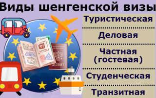 Виды виз в Польшу для россиян — туристическая, рабочая, транзитная и другие