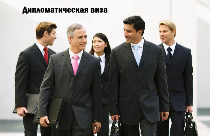 Дипломатическая виза