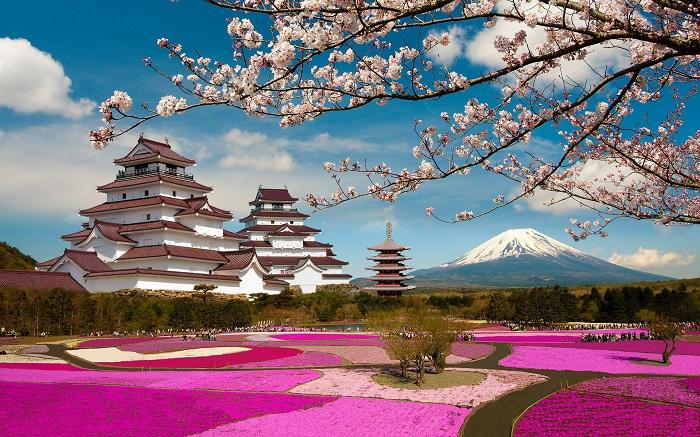 Документы на визу в Японию приглашение, страховка, заполнение анкеты