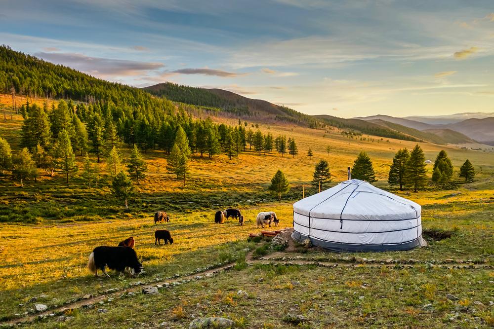 Безвизовый въезд в Монголию