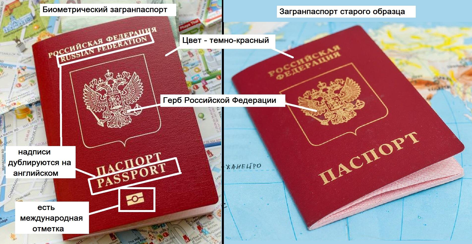 Биометрический паспорт для шенгенской визы банк