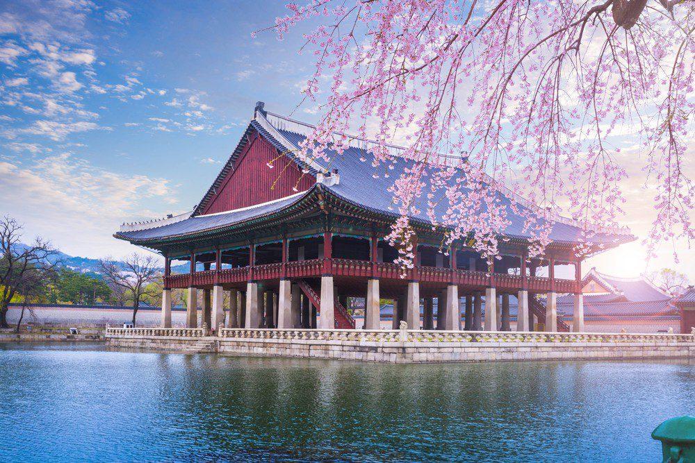 Нужна ли виза в Южную Корею для россиян в 2020 году. Виза в Сеул » Хочу отдых на море! Всё, про отдых вашей мечты.