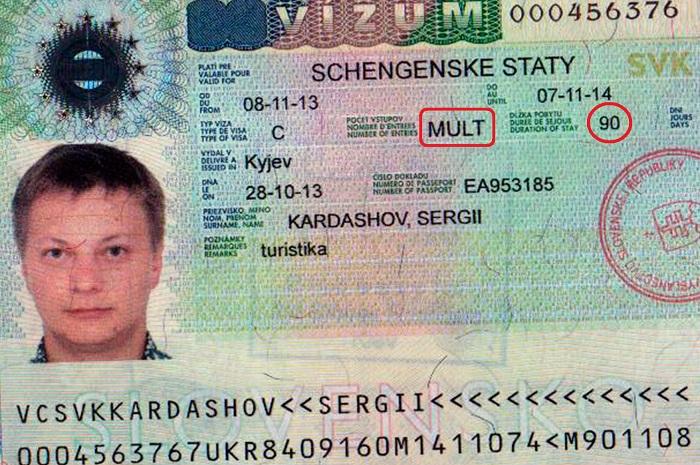 Годовая виза сколько дней пребывания новые правила