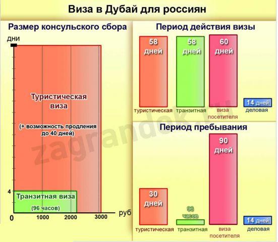 График по срокам и стоимости визы